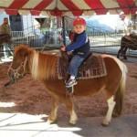 Pony Ride Rentals in Ohio