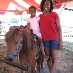 Pony Rentals for Birthday Parties in ohio
