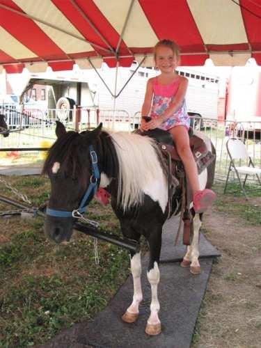 pony ride rentals for birthday parties in delphos ohio
