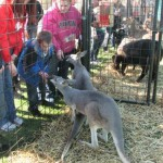 Exotic Animal Traveling Petting Zoo in Ohio