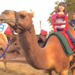 Camel Rides For Fairs in Ohio