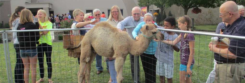 Exotic Animals Mobile Petting Zoo, Shows & Exhibits in