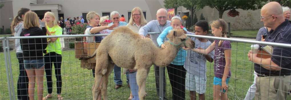Exotic Animal Mobile Traveling Petting Zoo In Ohio